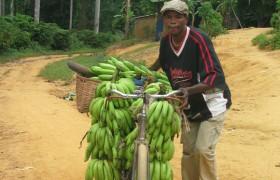 Kongo CEPECO 2010 (Boma) dth 004