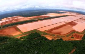 Ma questo piccolo paradiso è minacciato dalle miniere di bauxite. (© Carlos Penteado CPI-SP)