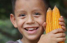 Kolumbianischer Junge mit Maiskolben in der Hand.