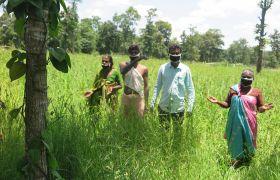 Landwirtschaft zur Selbstversorgung erweist sich in der Coronakrise als hilfreich.